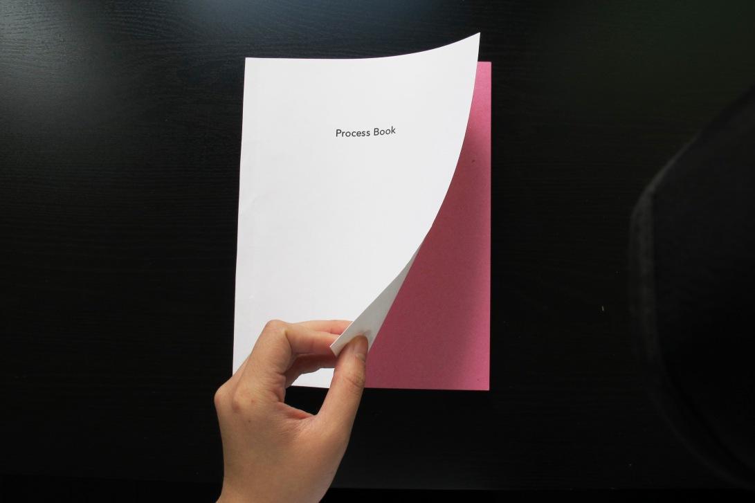 taboo process book6.jpg